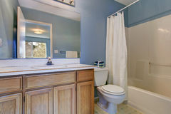 Simple bathroom interior in light blue Royalty Free Stock Photo