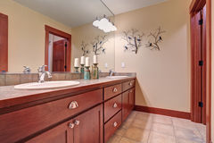 Simple bathroom with red wood cabinets. Stock Images