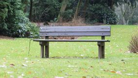 Simple bench in a park Royalty Free Stock Photo