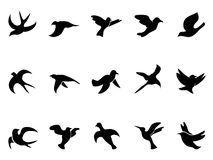 Simple bird's flying Silhouettes. Isolated simple bird's flying Silhouettes from white background vector illustration