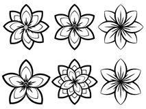 Simple Black and White Flowers stock illustration
