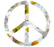 White flowers hippies peace icon isolated on white background. Simple bright peace symbol of innocent white flowers isolated on white background Royalty Free Stock Photos