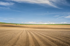 Simple brown horizon. Simple brown field horizon with blue sky Stock Photography