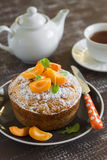 Simple butter cake decorated with slices of apricots Stock Images