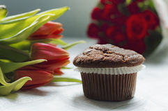 Simple chocolate muffin Royalty Free Stock Photo
