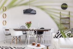 Simple and clear dining room with a scent of exoticism. Modern dining room with a stylish table and designer chairs seen from the perspective of a blurred palm Stock Photography