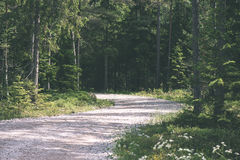 Simple country road in summer - vintage film effect Stock Images