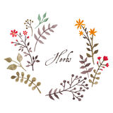Simple and cute floral oval wreath Royalty Free Stock Images