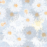 Simple daisy flowers seamless pattern Royalty Free Stock Image