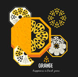 Simple decorative orange fruit illustration. Vector food art print in geometric style. Stock Image