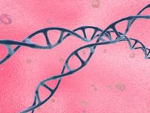 Simple dna spirals Royalty Free Stock Photography