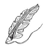 Simple doodle of a quill Stock Photo