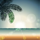 Summertime sunset with transparencies vector illustration
