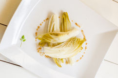 Simple endive dish Royalty Free Stock Images