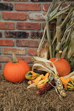 Simple Fall scene with pumpkins,squash and Indian Corn Stock Photo