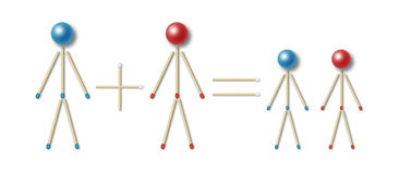 Simple family equation. Simple equation of a family represented by little men made of blue and red matches and balls, mother plus father equals two children stock illustration