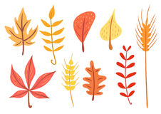 Simple flat autumn leaves set Royalty Free Stock Photos