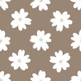 Simple floral seamless pattern. Repeated white flowers on a brown background. Vector illustration Stock Image