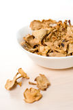 Simple food composition with dried mushrooms. Closeup on unique backing royalty free stock photos