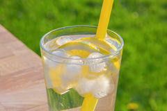 Simple glass of ice water with lemon slices and straw Stock Photo