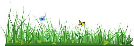 Simple grass with leafs, butterflies and flowers Royalty Free Stock Images