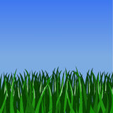 Simple green grass. On gradient blue background stock illustration