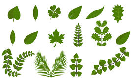 Simple green leaf set flat symbol icon collection Stock Photos