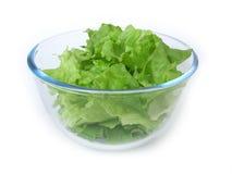 Simple green salad Stock Photos