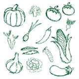 Simple hand drawn doodle vegetables icons Royalty Free Stock Photos