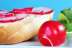 Simple yet healthy sandwich Stock Images