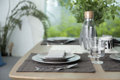 Simple home table setting. Glasses and cutlery and green plant Royalty Free Stock Photo