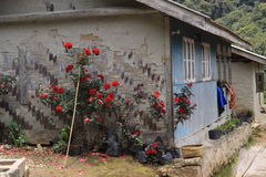 Simple house. Trekking in majestic Himalaya mountains stock photos