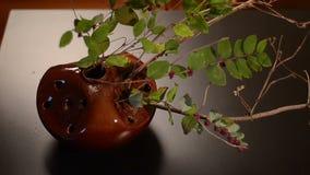 Simple ikebana arrangement