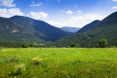 Simple landscape with mountain meadow Stock Photography
