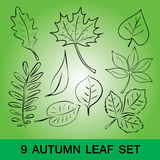 Simple leaf set eps10. On green background Royalty Free Stock Photography