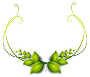 A simple leafy border Stock Photography