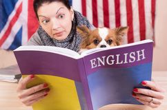Simple learning language concept. Stock Image