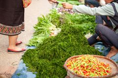 Simple life, Laos people at the daily morning market. Fresh local fruits and exotic vegetables. River weed or Kaipen foreground. royalty free stock photos
