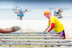 Simple life, Thai woman laying down fish on the net for drying, harbor and traditional fishing boat backgrounds. Rainy season. stock photo