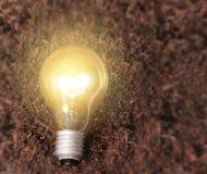 Simple light bulbs Royalty Free Stock Photos