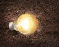 Simple light bulbs Stock Image