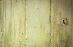 Simple light green textured background Stock Photos