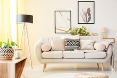 Simple living room. Patterned pillow on a beige couch next to lamp and plant on a cabinet in simple living room with posters on the wall Stock Photos