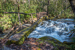 Simple Log Bridge Over Fast Moving Creek Stock Images