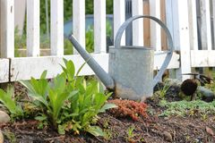 Simple Metal Watering Can Royalty Free Stock Photo
