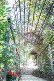 Simple outdoor bamboo arch into the garden Stock Photography