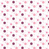 Simple pink flower pattern colorfulness cute Stock Images
