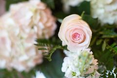 Simple Pink and White Rose Vase Table Arrangement Royalty Free Stock Photos