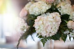 Simple Pink and White Rose Vase Table Arrangement Stock Photos