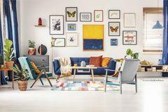 Simple posters gallery hanging on the wall in bright living room. Interior with blue sofa, two armchairs, fresh plants and wooden coffee table standing on royalty free stock images